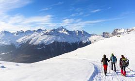 Ski Winter Wandern Schnee