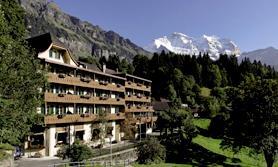 Alpenrose Wengen Schweiz