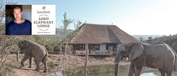 Barefoot Addo Elephant Lodge Afrika