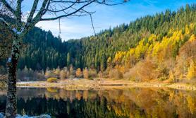 Schwarzwald Deutschland