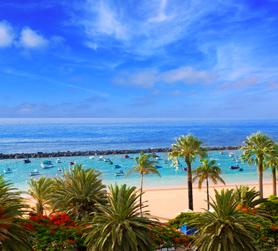Pauschalurlaub Fuerteventura