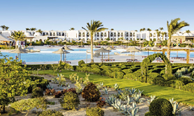 Ägypten Gorgonia Beach